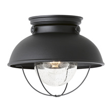 Sea Gull 8869-12 - One Light Outdoor Ceiling Flush Mount
