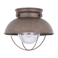 Sea Gull 8869-44 - One Light Outdoor Ceiling Flush Mount